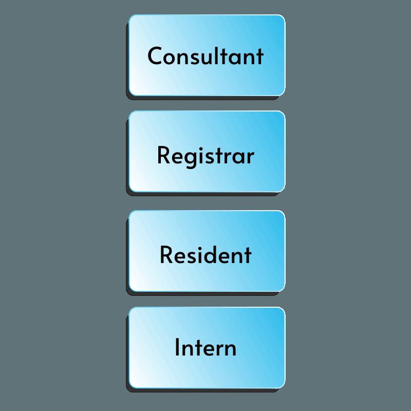 doctor hierarchy