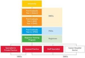 qld health doctor hierarchy